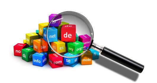 Domain-Name-Basics-New-Zealand