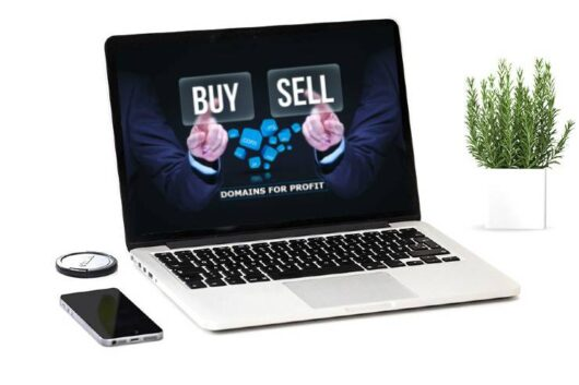 Hot To Buy and Sell Domains in NZ